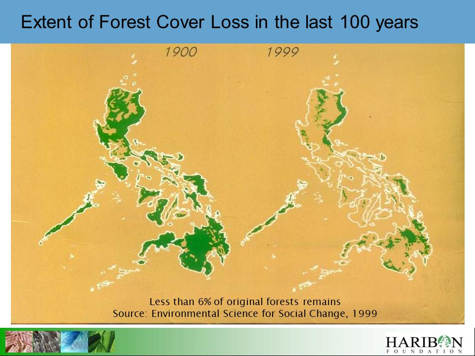 Less than 6% of original forests remains Source: Environmental Science for Social Change, 1999 Extent of Forest Cover Loss in the last 100 years