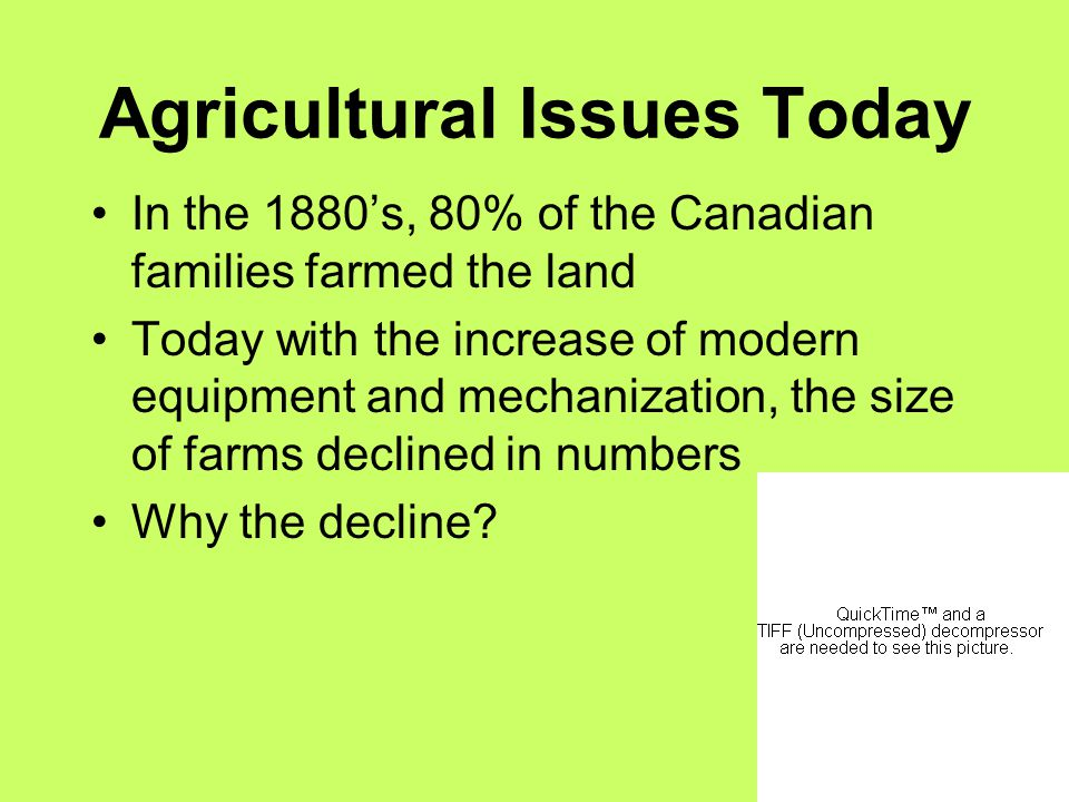 Agricultural Issues Today In the 1880's, 80% of the Canadian families farmed the land Today with the increase of modern equipment and mechanization, the size of farms declined in numbers Why the decline?