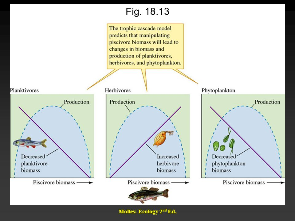 Molles: Ecology 2 nd Ed. Fig. 18.13