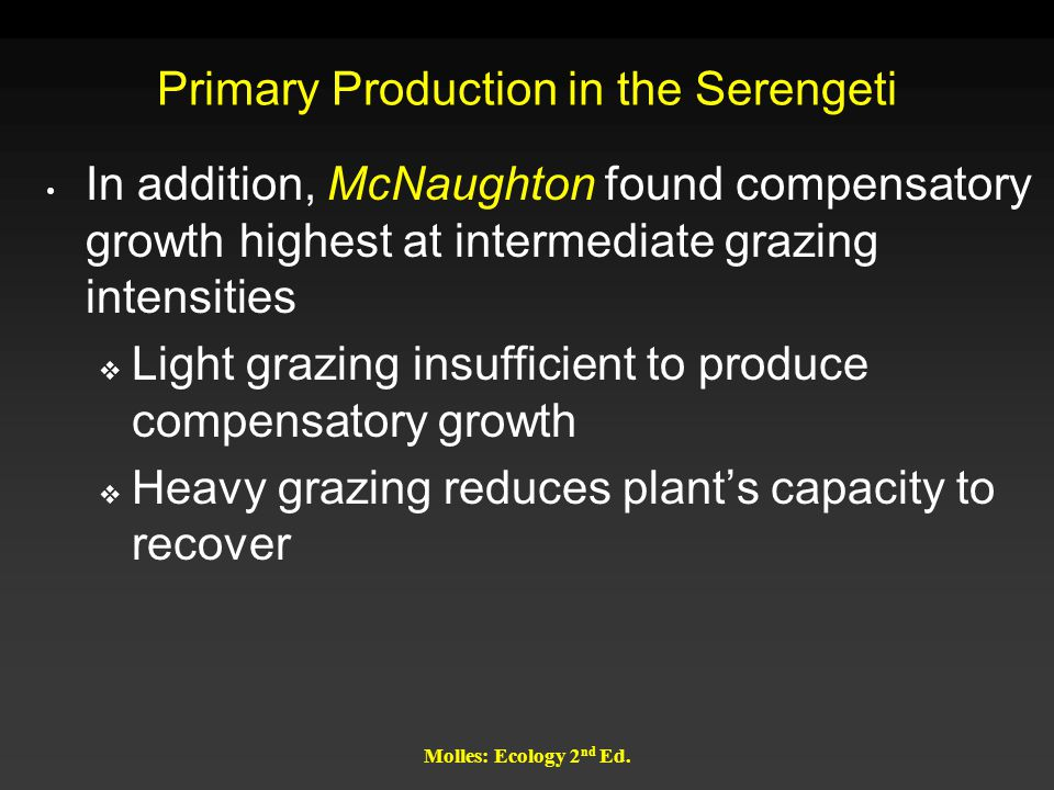 Molles: Ecology 2 nd Ed. Primary Production in the Serengeti In addition, McNaughton found compensatory growth highest at intermediate grazing intensi