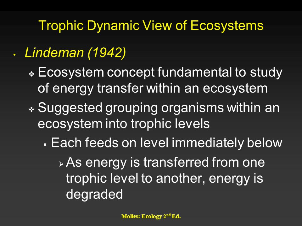Molles: Ecology 2 nd Ed. Trophic Dynamic View of Ecosystems Lindeman (1942)  Ecosystem concept fundamental to study of energy transfer within an ecos