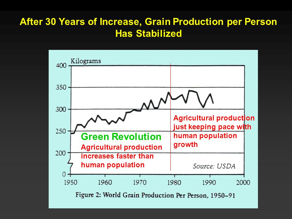 After 30 Years of Increase, Grain Production per Person Has Stabilized Green Revolution Agricultural production increases faster than human population Agricultural production just keeping pace with human population growth