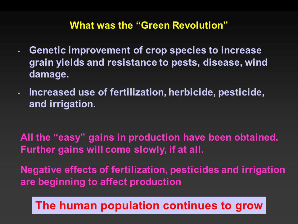What was the Green Revolution Genetic improvement of crop species to increase grain yields and resistance to pests, disease, wind damage.