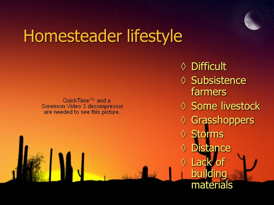 Homesteader lifestyle ◊Difficult ◊Subsistence farmers ◊Some livestock ◊Grasshoppers ◊Storms ◊Distance ◊Lack of building materials
