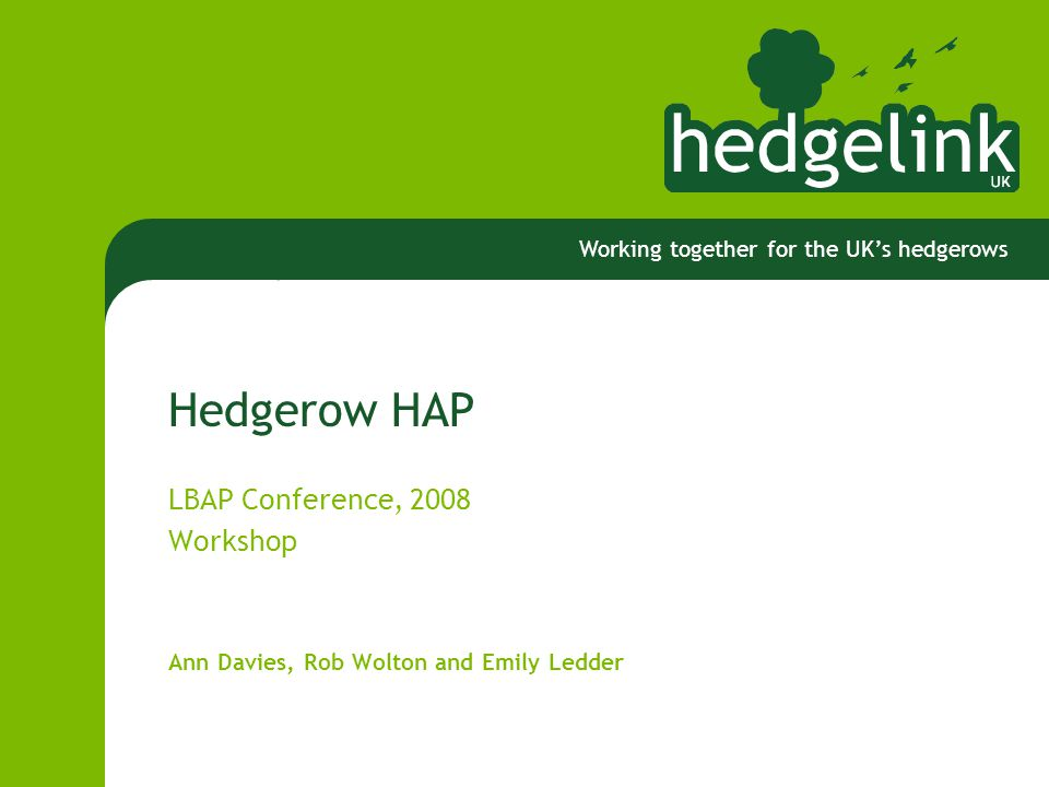 Working together for the UK's hedgerows Hedgerow HAP LBAP Conference, 2008 Workshop Ann Davies, Rob Wolton and Emily Ledder