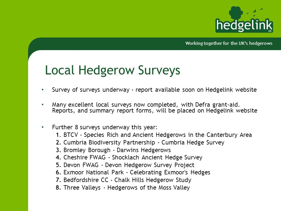 Working together for the UK's hedgerows Local Hedgerow Surveys Survey of surveys underway - report available soon on Hedgelink website Many excellent local surveys now completed, with Defra grant-aid.