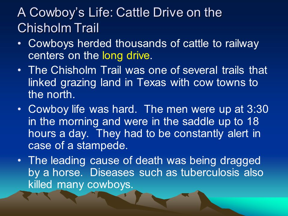 A Cowboy's Life: Cattle Drive on the Chisholm Trail Cowboys herded thousands of cattle to railway centers on the long drive. The Chisholm Trail was on