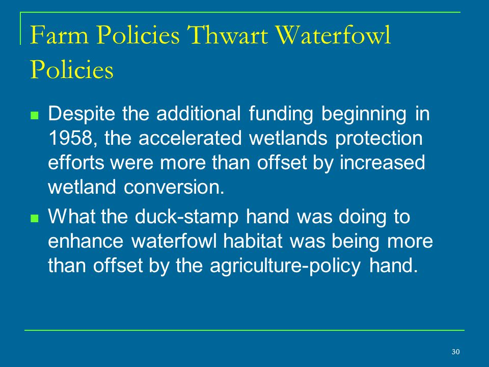 30 Farm Policies Thwart Waterfowl Policies Despite the additional funding beginning in 1958, the accelerated wetlands protection efforts were more tha