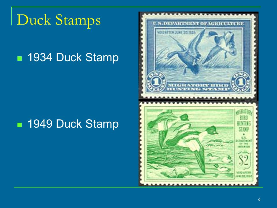 6 Duck Stamps 1934 Duck Stamp 1949 Duck Stamp