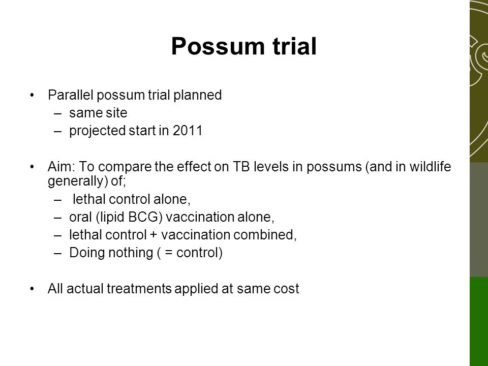 Parallel possum trial planned –same site –projected start in 2011 Aim: To compare the effect on TB levels in possums (and in wildlife generally) of; – lethal control alone, –oral (lipid BCG) vaccination alone, –lethal control + vaccination combined, –Doing nothing ( = control) All actual treatments applied at same cost Possum trial