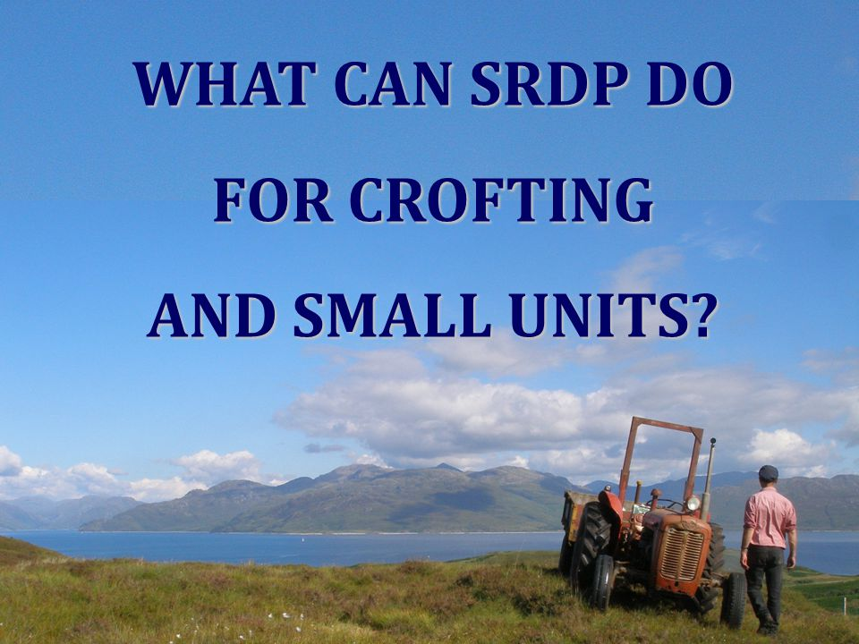 WHAT CAN SRDP DO FOR CROFTING AND SMALL UNITS?