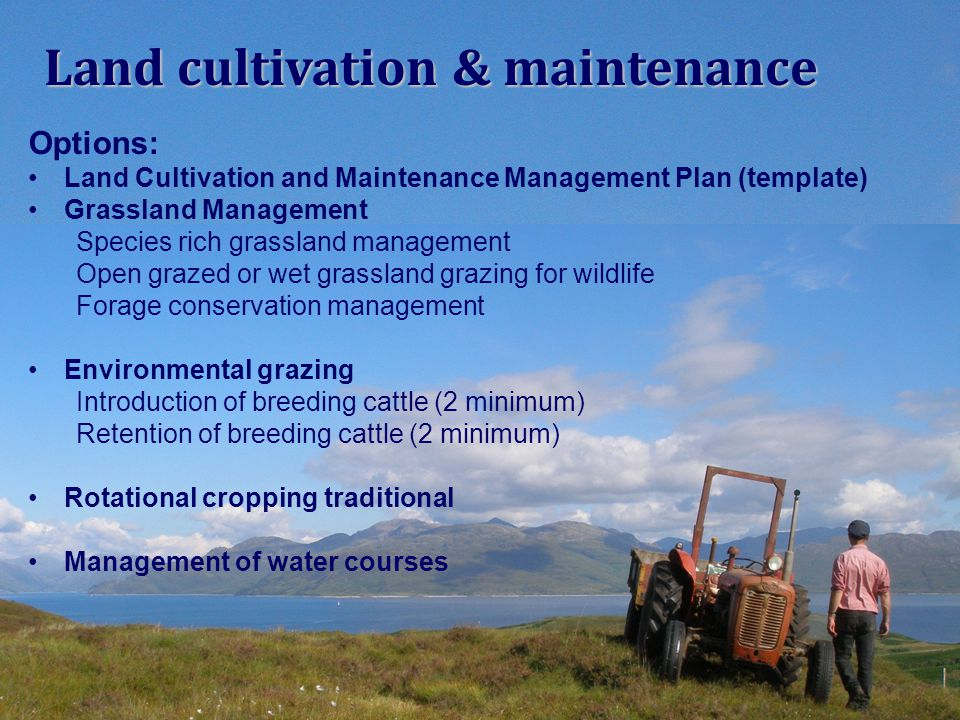 Options: Land Cultivation and Maintenance Management Plan (template) Grassland Management Species rich grassland management Open grazed or wet grassla