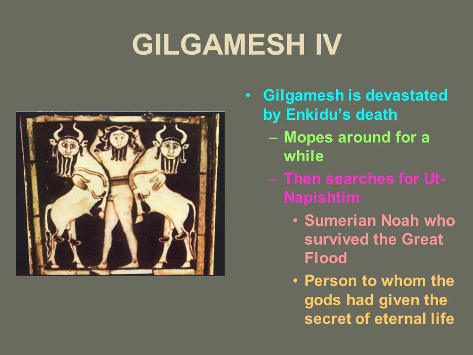 GILGAMESH IV Gilgamesh is devastated by Enkidu's death –Mopes around for a while –Then searches for Ut- Napishtim Sumerian Noah who survived the Great Flood Person to whom the gods had given the secret of eternal life
