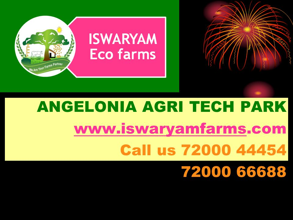 ANGELONIA AGRI TECH PARK www.iswaryamfarmswww.iswaryamfarms.com Call us 72000 44454 72000 66688