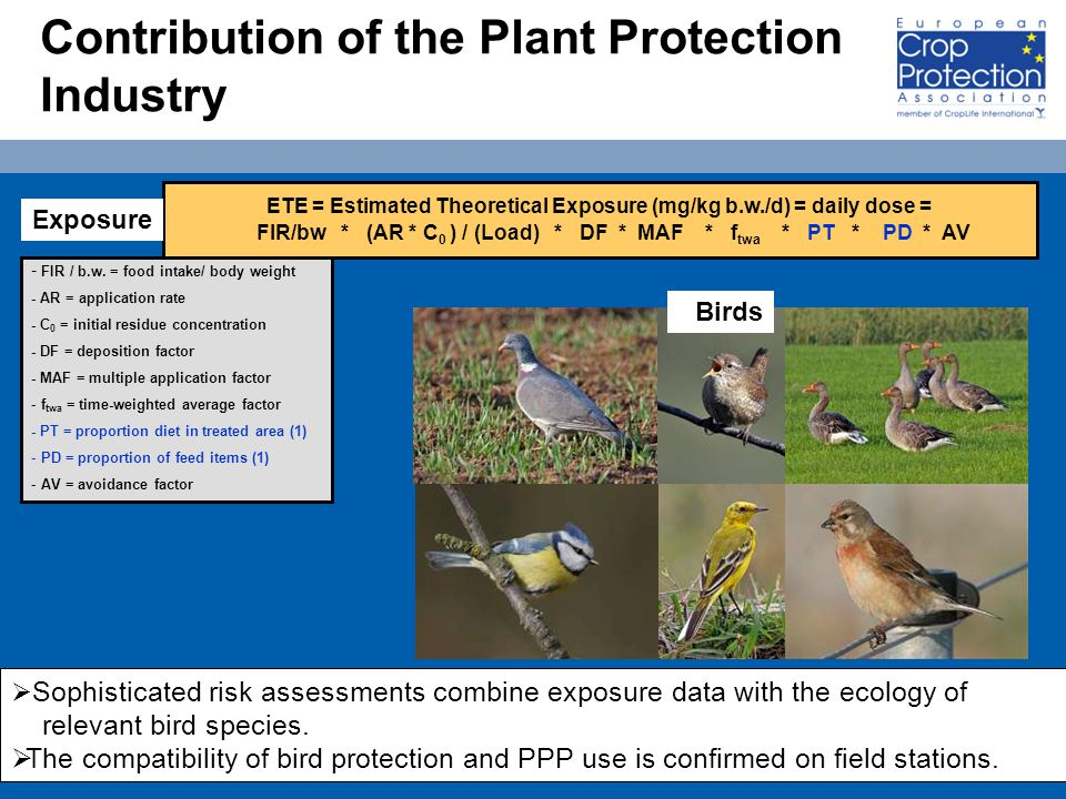15 Contribution of the Plant Protection Industry ETE = Estimated Theoretical Exposure (mg/kg b.w./d) = daily dose = FIR/bw * (AR * C 0 ) / (Load) * DF * MAF * f twa * PT * PD * AV - FIR / b.w.