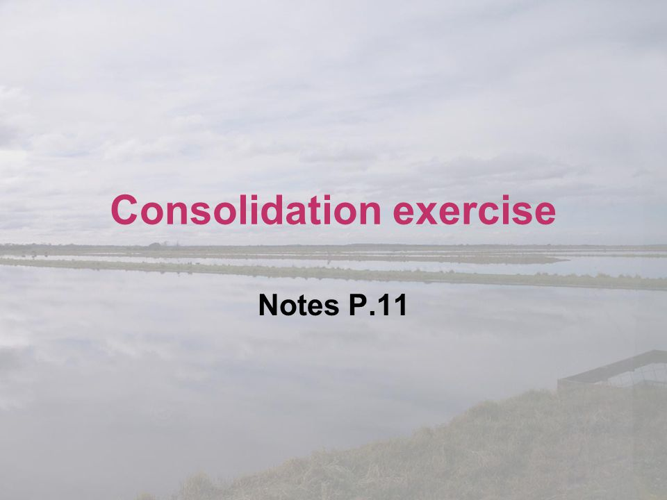 Consolidation exercise Notes P.11