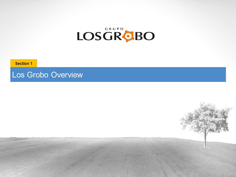 Los Grobo Overview Section 1