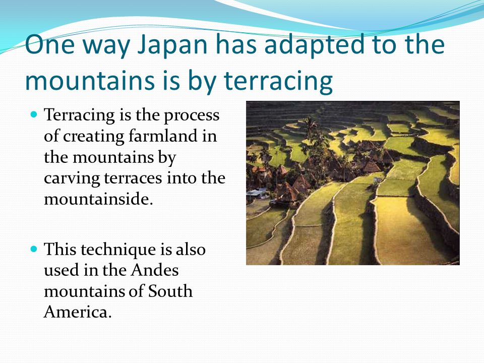 One way Japan has adapted to the mountains is by terracing Terracing is the process of creating farmland in the mountains by carving terraces into the