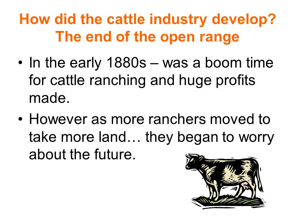 How did the cattle industry develop? The end of the open range In the early 1880s – was a boom time for cattle ranching and huge profits made. However