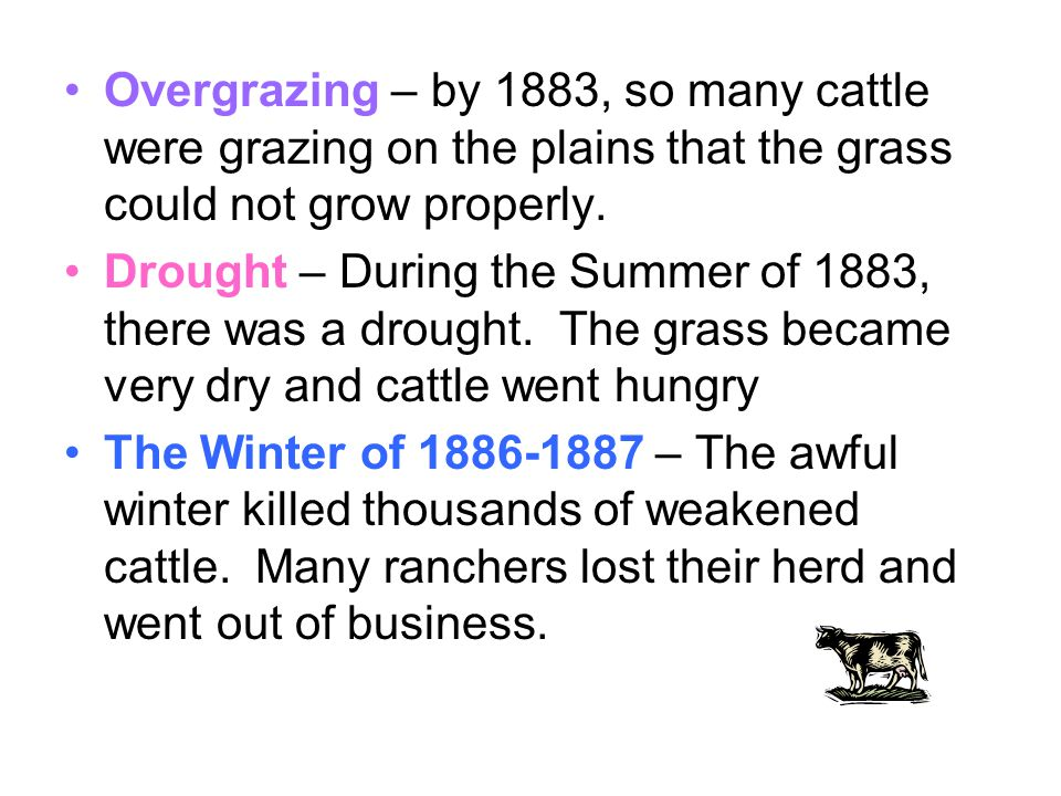 Overgrazing – by 1883, so many cattle were grazing on the plains that the grass could not grow properly. Drought – During the Summer of 1883, there wa
