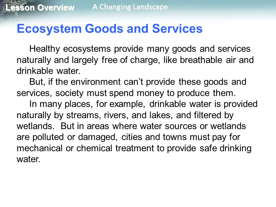 Lesson Overview Lesson Overview A Changing Landscape Ecosystem Goods and Services Healthy ecosystems provide many goods and services naturally and lar