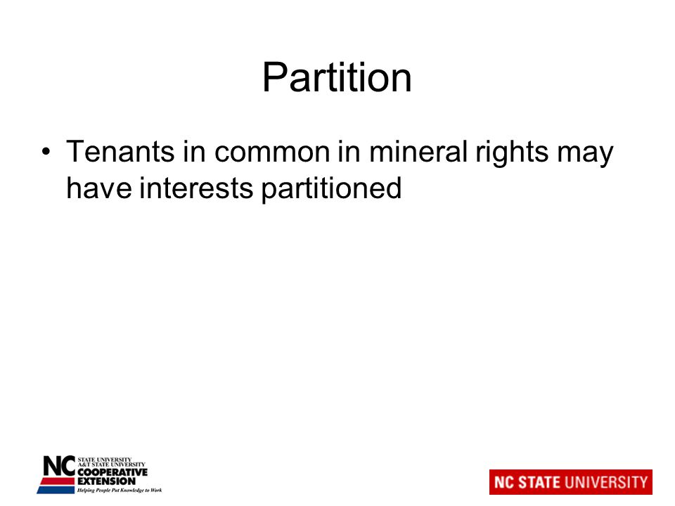 Partition Tenants in common in mineral rights may have interests partitioned