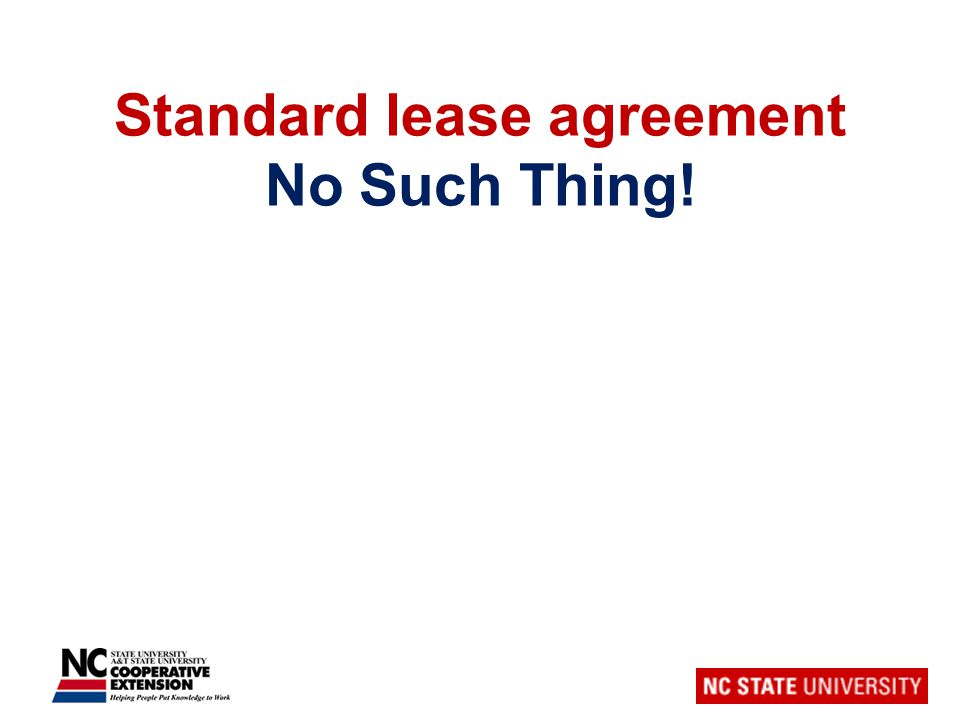 Standard lease agreement No Such Thing!