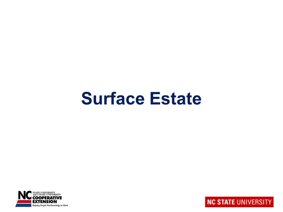 Surface Estate