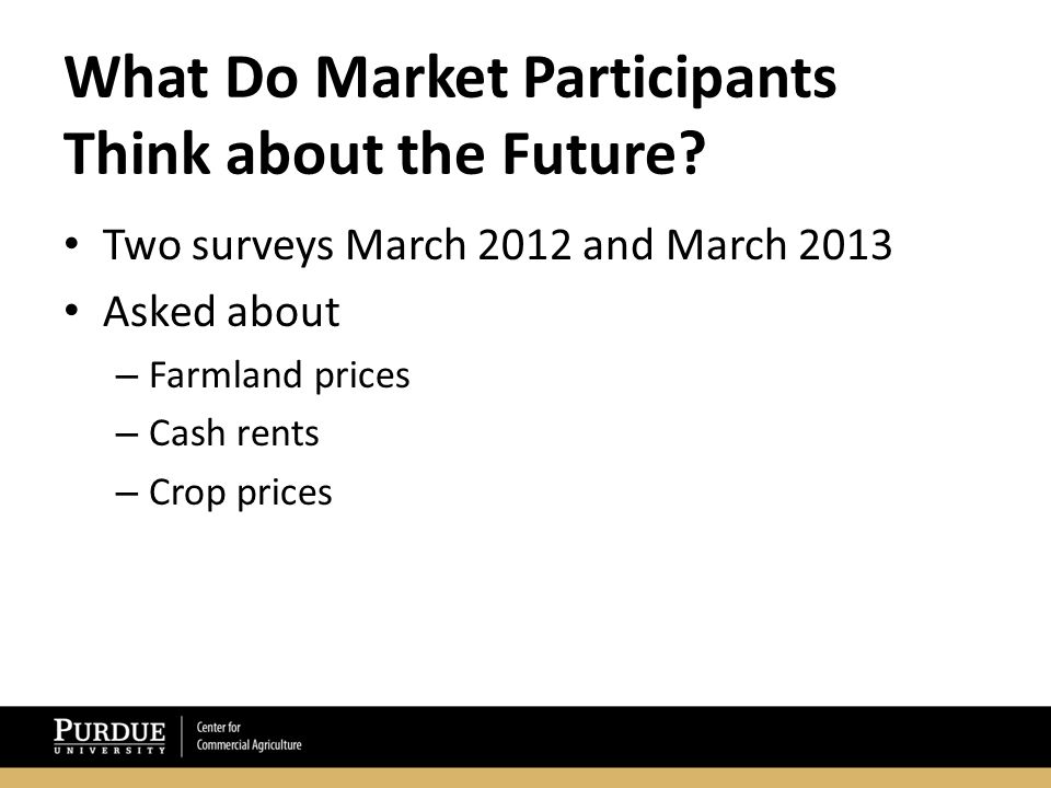 What Do Market Participants Think about the Future.