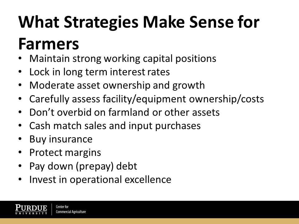 What Strategies Make Sense for Farmers Maintain strong working capital positions Lock in long term interest rates Moderate asset ownership and growth Carefully assess facility/equipment ownership/costs Don't overbid on farmland or other assets Cash match sales and input purchases Buy insurance Protect margins Pay down (prepay) debt Invest in operational excellence