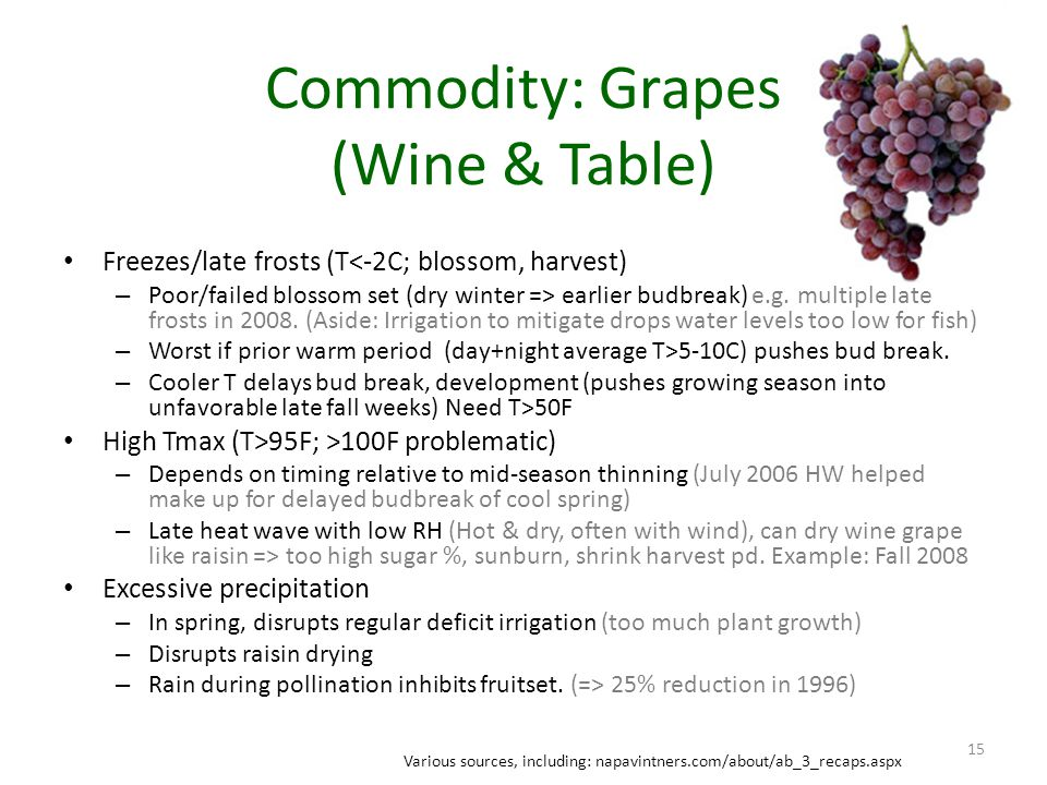 Commodity: Grapes (Wine & Table) Freezes/late frosts (T<-2C; blossom, harvest) – Poor/failed blossom set (dry winter => earlier budbreak) e.g.