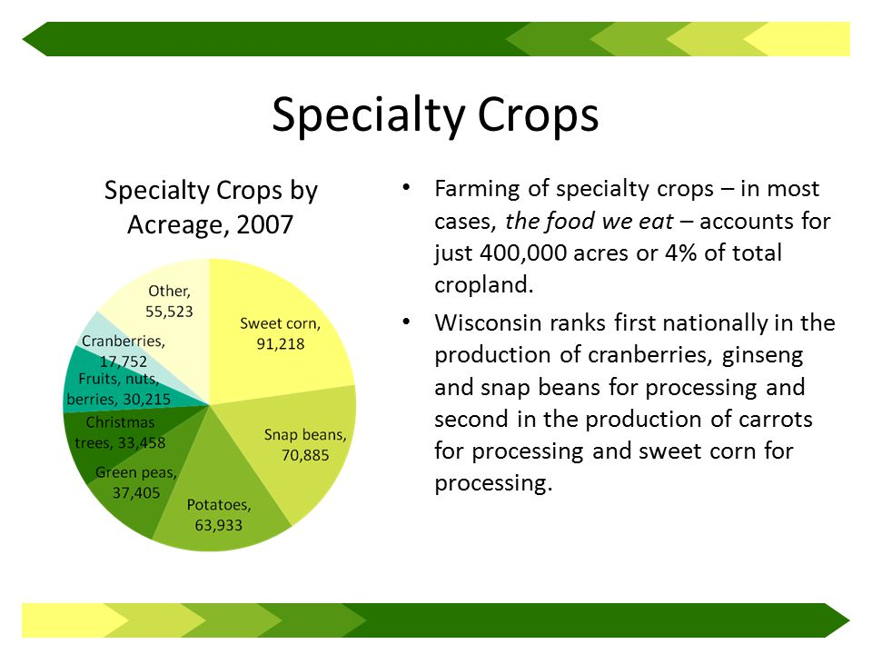Specialty Crops Farming of specialty crops – in most cases, the food we eat – accounts for just 400,000 acres or 4% of total cropland.