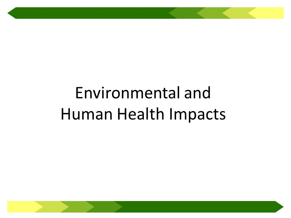 Environmental and Human Health Impacts