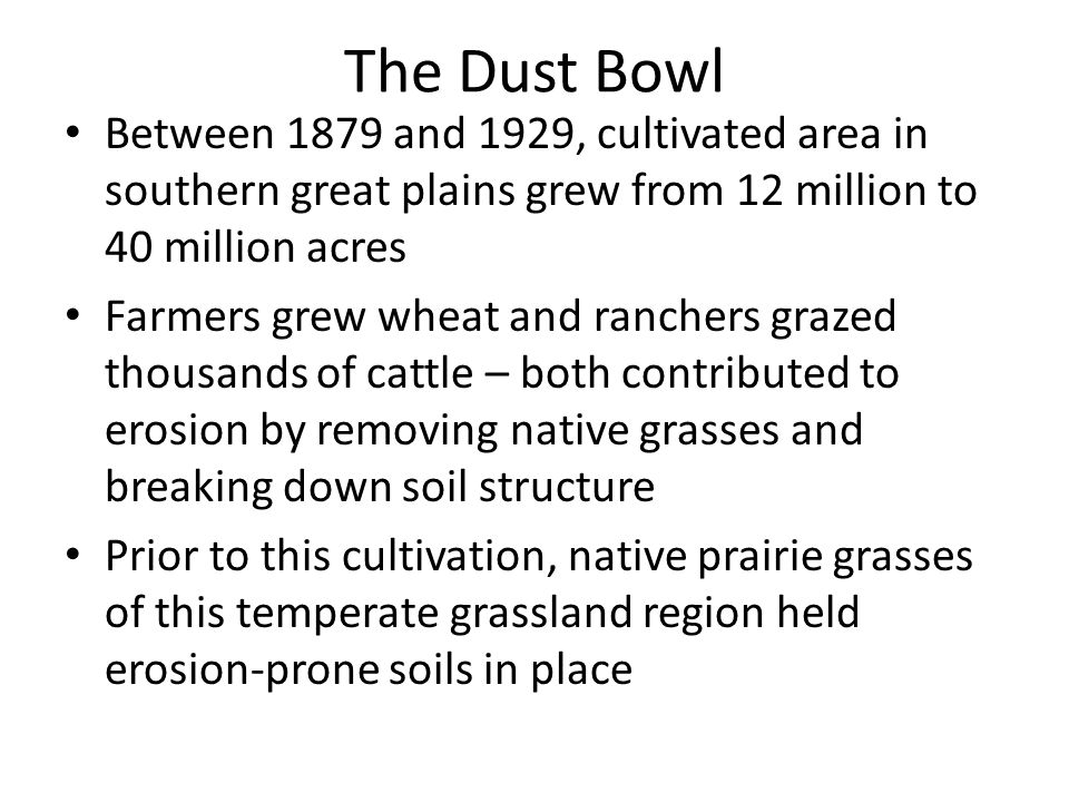 The Dust Bowl Between 1879 and 1929, cultivated area in southern great plains grew from 12 million to 40 million acres Farmers grew wheat and ranchers