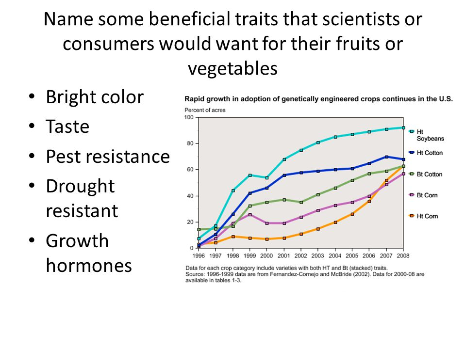 Name some beneficial traits that scientists or consumers would want for their fruits or vegetables Bright color Taste Pest resistance Drought resistan
