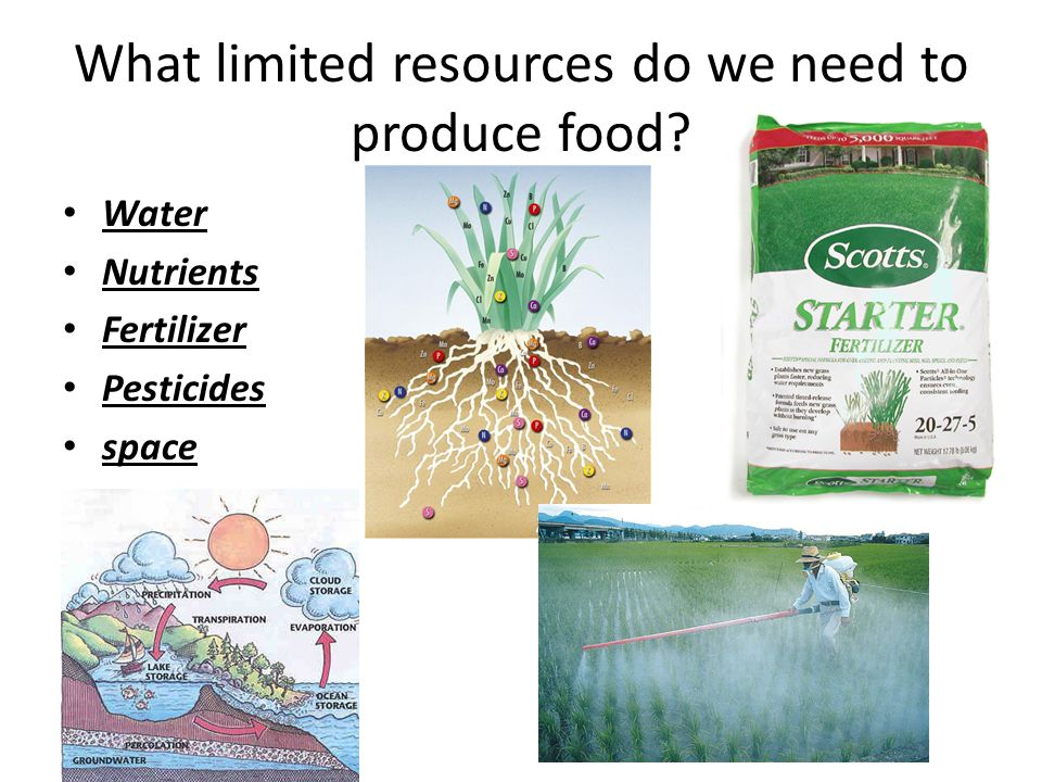What limited resources do we need to produce food? Water Nutrients Fertilizer Pesticides space