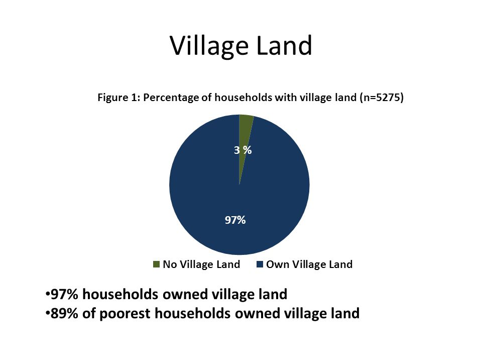 Village Land 97% households owned village land 89% of poorest households owned village land