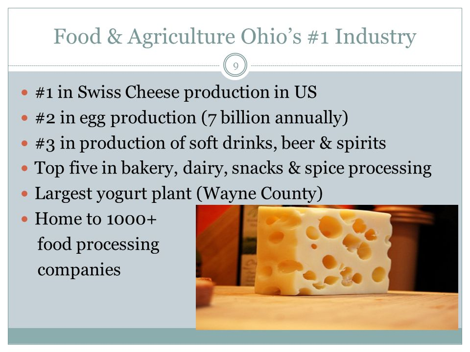 Food & Agriculture Ohio's #1 Industry #1 in Swiss Cheese production in US #2 in egg production (7 billion annually) #3 in production of soft drinks, beer & spirits Top five in bakery, dairy, snacks & spice processing Largest yogurt plant (Wayne County) Home to 1000+ food processing companies 9