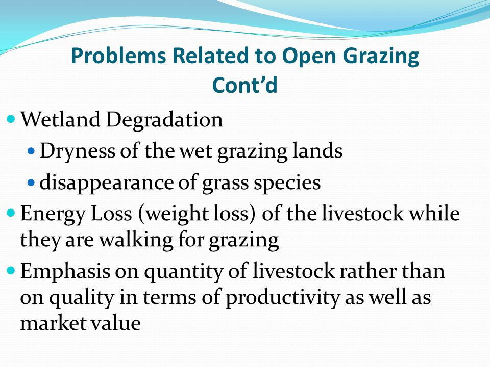 Problems Related to Open Grazing Cont'd Wetland Degradation Dryness of the wet grazing lands disappearance of grass species Energy Loss (weight loss) of the livestock while they are walking for grazing Emphasis on quantity of livestock rather than on quality in terms of productivity as well as market value