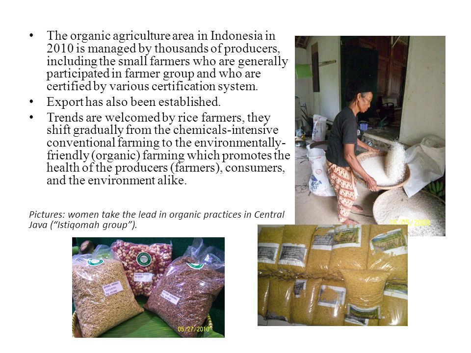 The organic agriculture area in Indonesia in 2010 is managed by thousands of producers, including the small farmers who are generally participated in farmer group and who are certified by various certification system.