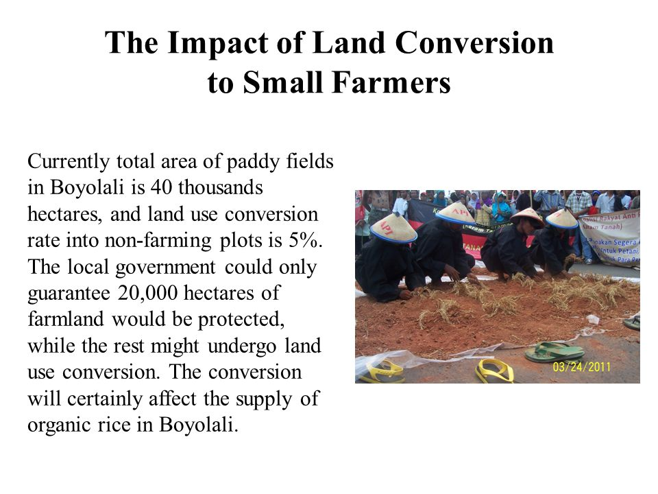 The Impact of Land Conversion to Small Farmers Currently total area of paddy fields in Boyolali is 40 thousands hectares, and land use conversion rate into non-farming plots is 5%.