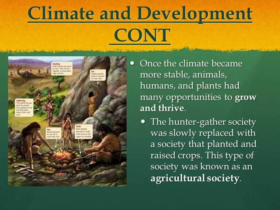 Climate and Development CONT Once the climate became more stable, animals, humans, and plants had many opportunities to grow and thrive. Once the clim