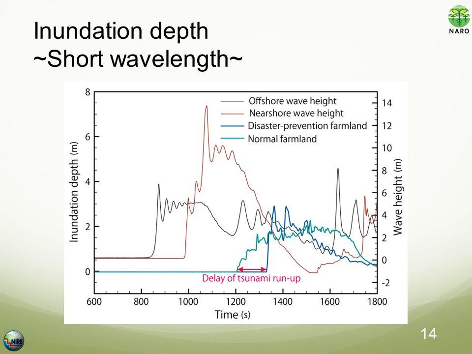 Inundation depth ~Short wavelength~ 14