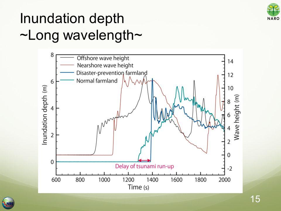 Inundation depth ~Long wavelength~ 15