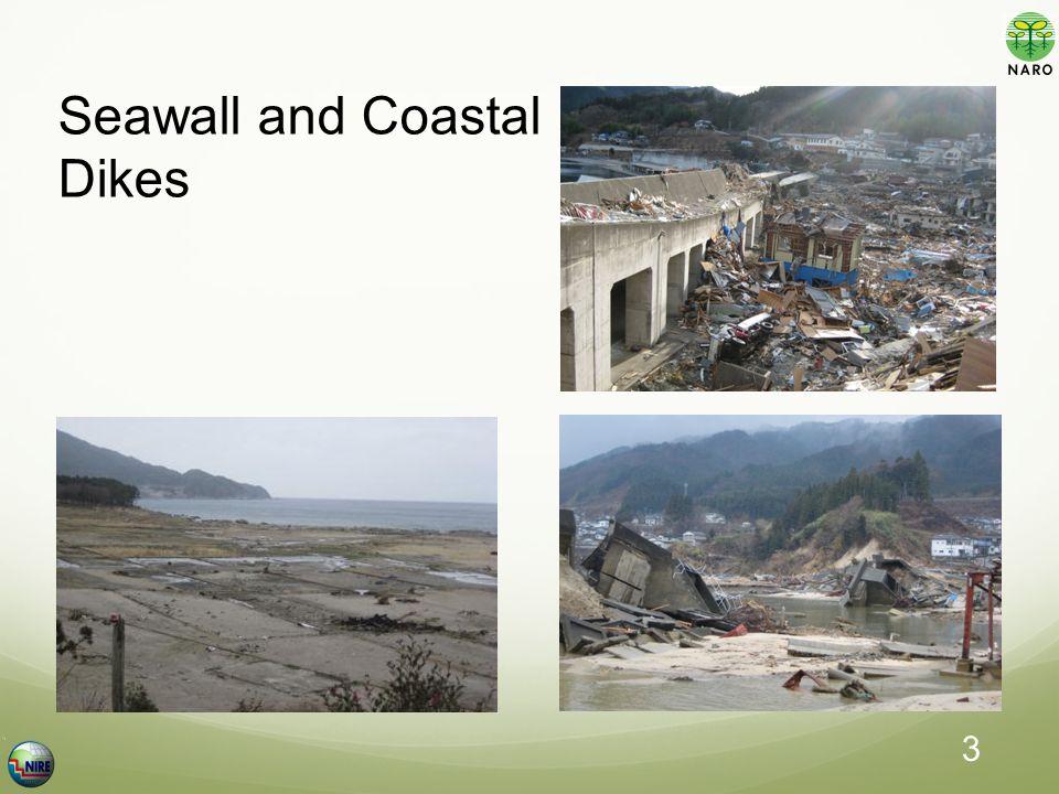 Seawall and Coastal Dikes 3