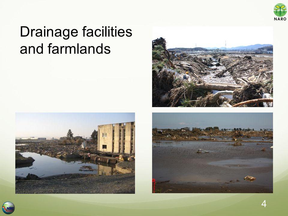 Drainage facilities and farmlands 4