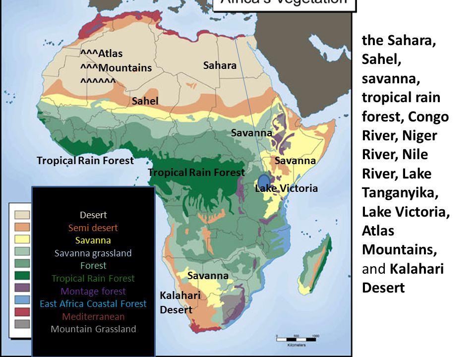 Desert Semi desert Savanna Savanna grassland Forest Tropical Rain Forest Montage forest East Africa Coastal Forest Mediterranean Mountain Grassland th