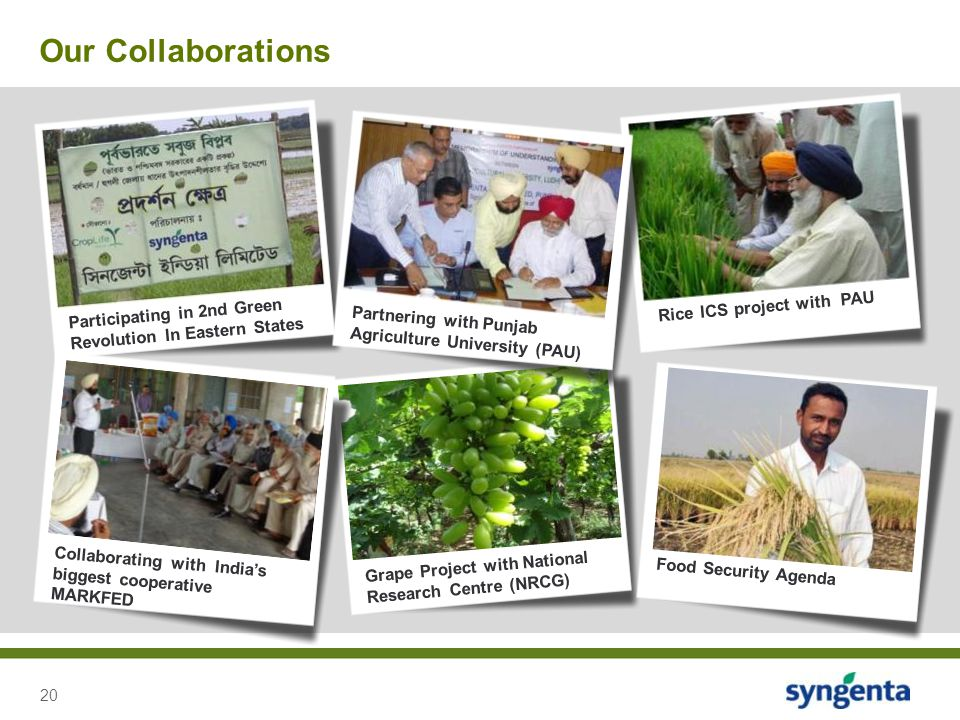 20 Our Collaborations Participating in 2nd Green Revolution In Eastern States Rice ICS project with PAU Grape Project with National Research Centre (N
