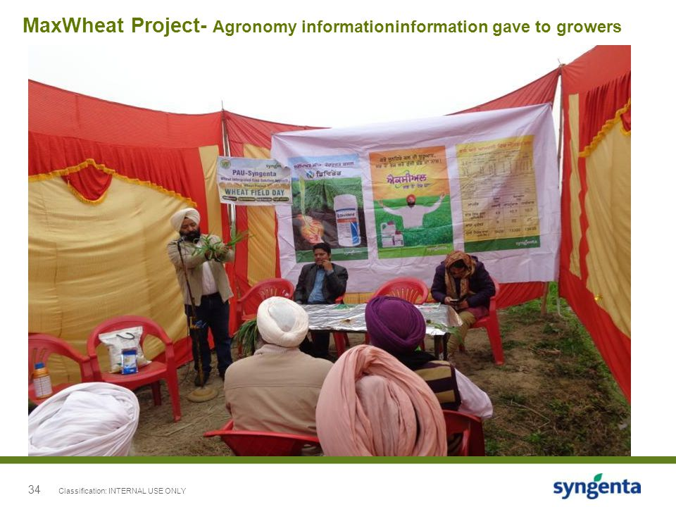34 MaxWheat Project- Agronomy informationinformation gave to growers Classification: INTERNAL USE ONLY