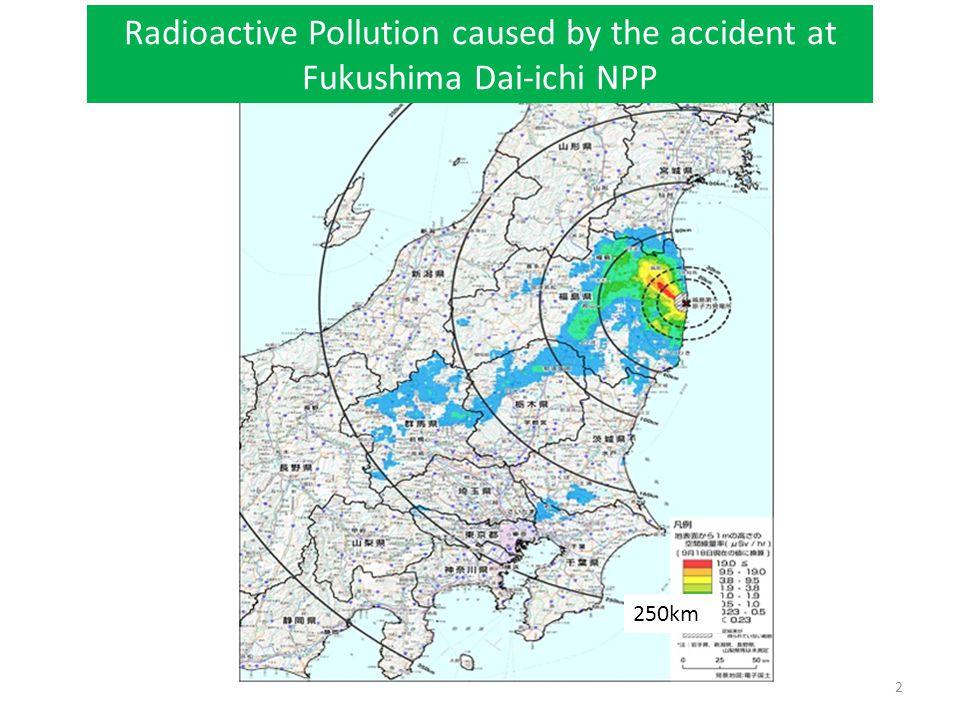 2 Radioactive Pollution caused by the accident at Fukushima Dai-ichi NPP 250km